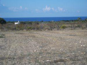 Coral Bay Plot