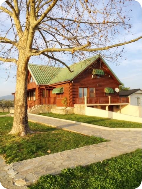 Dream House in Thessaloniki District - Property in Cyprus for Sale